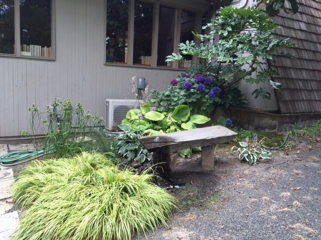 Hunger Garden