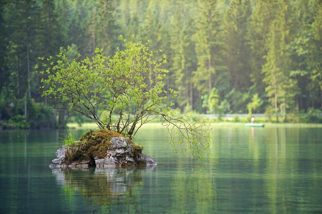 waters, nature, lake-3095682.jpg